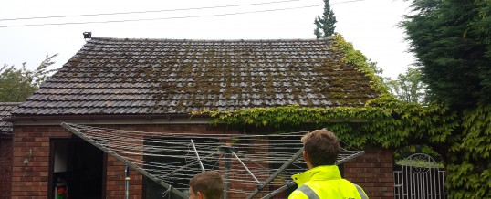 Why Its Important To Keep Your Roof Moss FREE