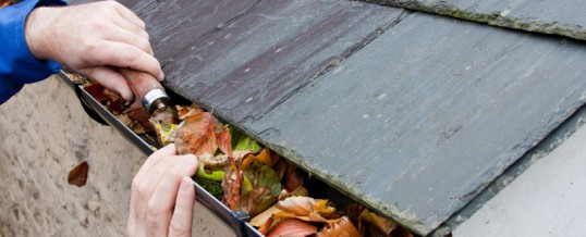 Maintaining Guttering And Keeping Them Clear Of Debris